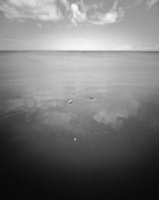 Shoreline XIV