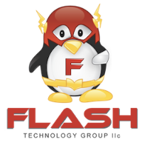 Flash Technology Group