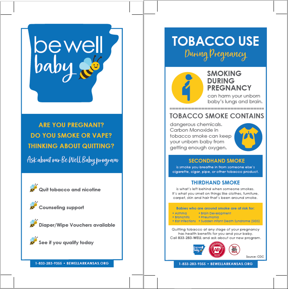 Be Well Baby - Know the Facts Panel Cards