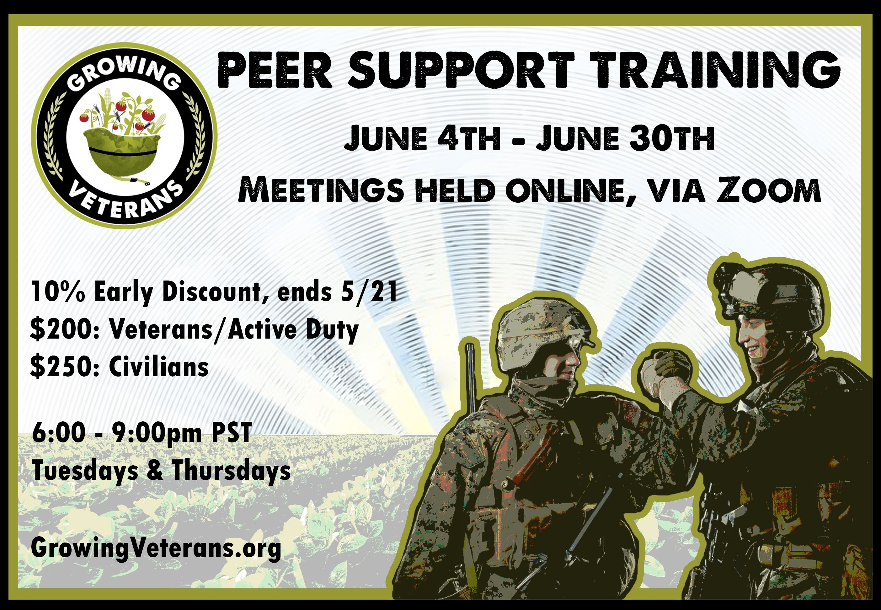 Online Peer Support Training