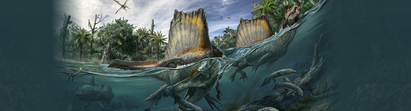 Dinosaur illustration by Davide Bonadonna