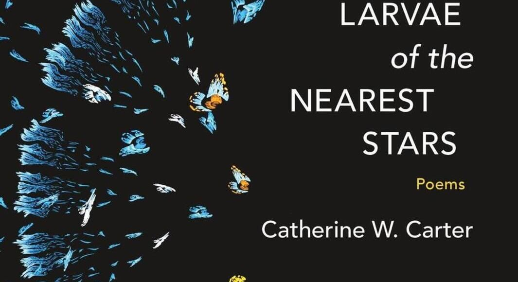 Join poet Catherine Carter for a reading March 10