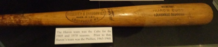Huron Cubs Baseball Bat