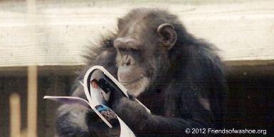 Primate News