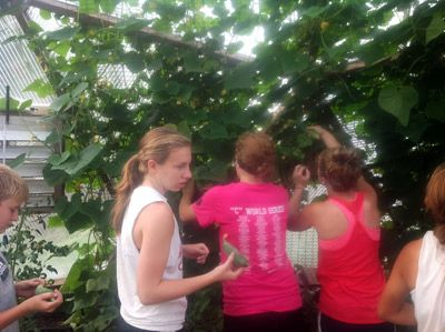 Freeman Students Explore Ag and Food Processing with Growing Dome