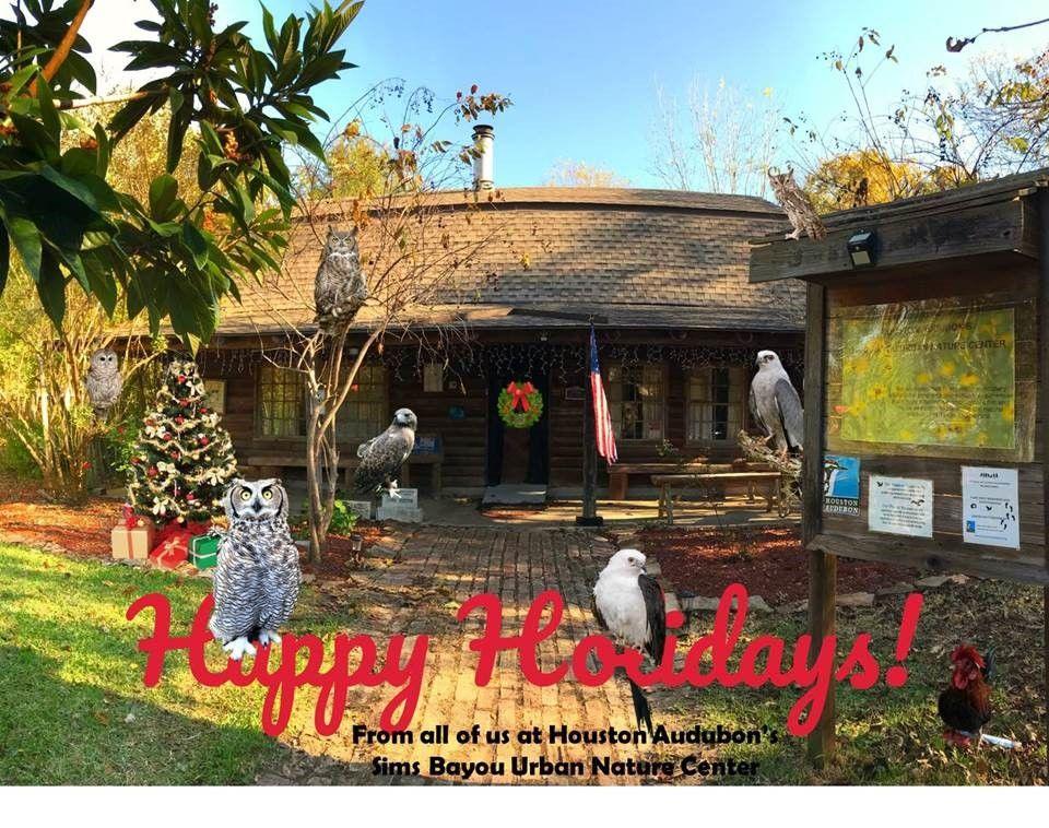 Sims Holiday Photo