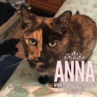 Anna passed 040718