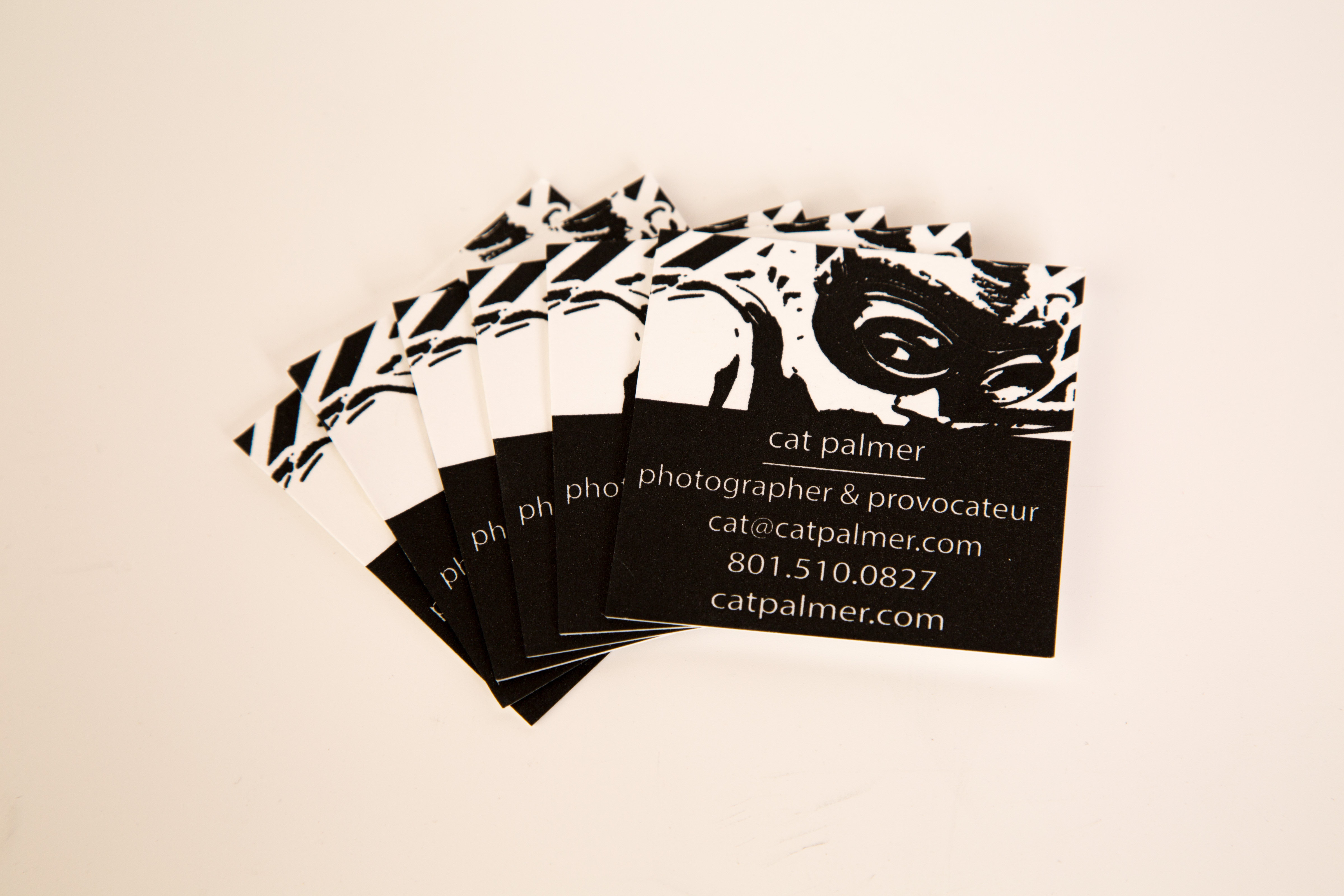 Business Card Full Color 1 sided