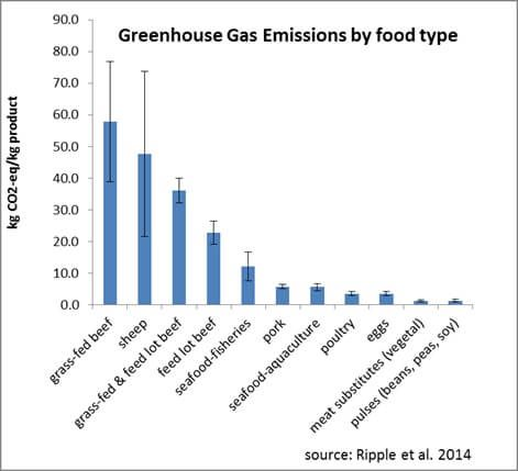 No, Grass-Fed Beef is Not Better for the Planet