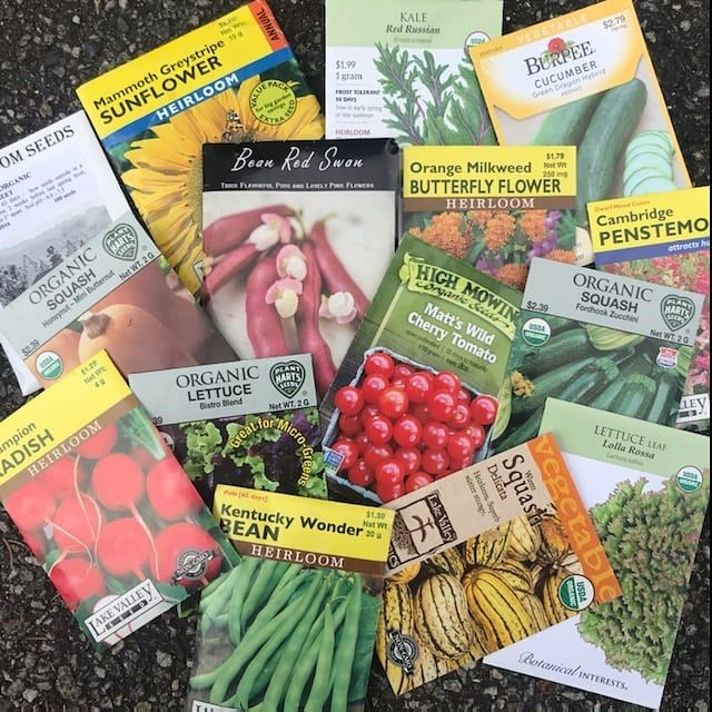We're Giving Away Seeds!