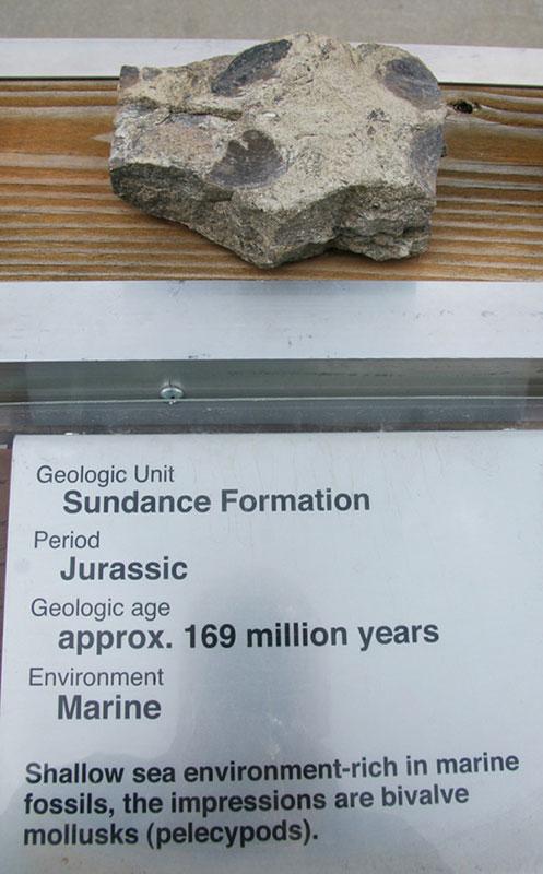 Sundance Formation - Jurassic