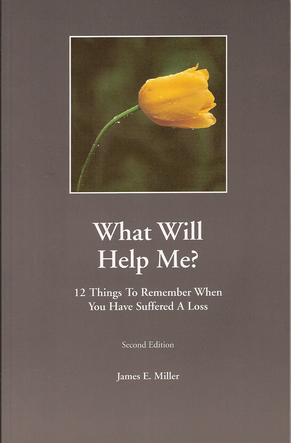 What Will Help Me? / How Can I Help? : 12 Things to Remember When You Have Suffered a Loss