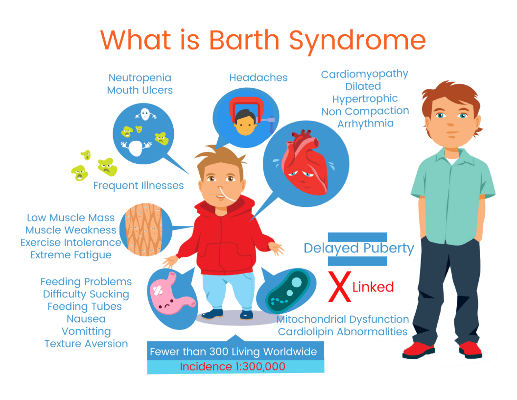Barth Syndrome Infograph