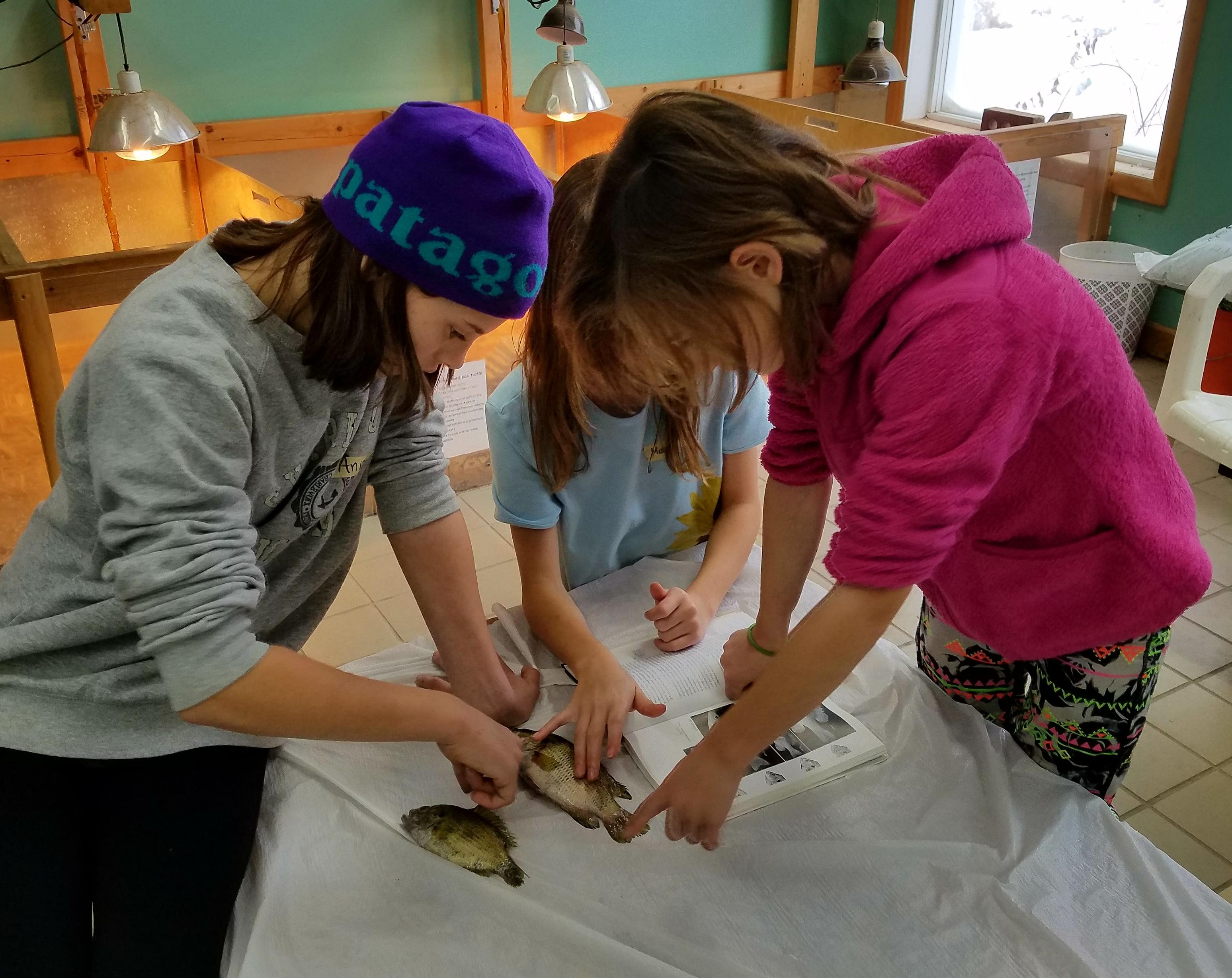 STEM Academy for Girls (SAG)