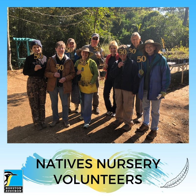 Natives Nursery Volunteers