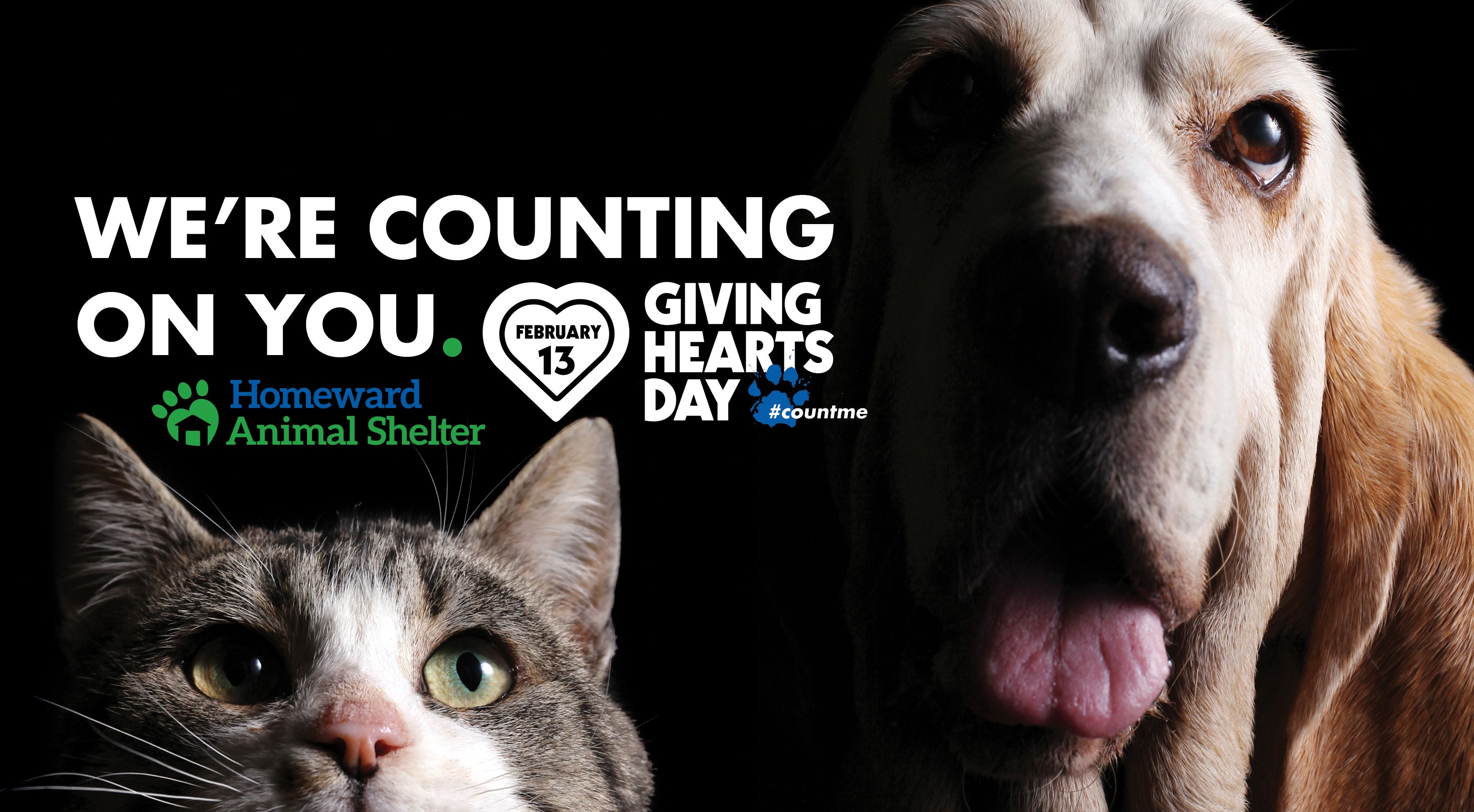 Support shelter pets on Giving Hearts Day.