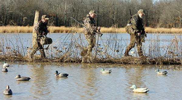 Should I pick up my decoys after each hunt?