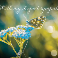 With my deepest sympathy