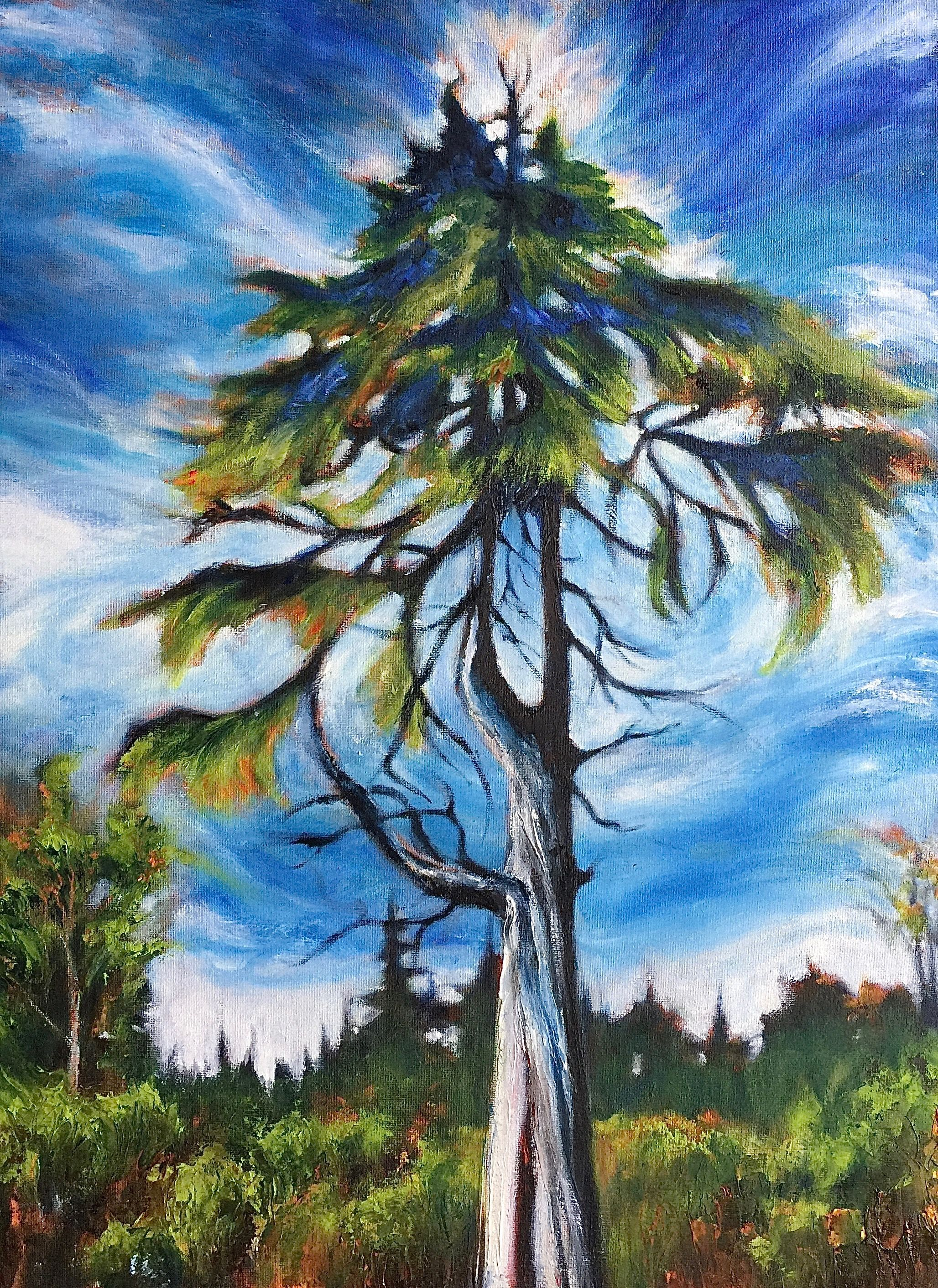 "Marilyn Lee - ""Yellow Cedar, Muskeg by Point Higgins School"""