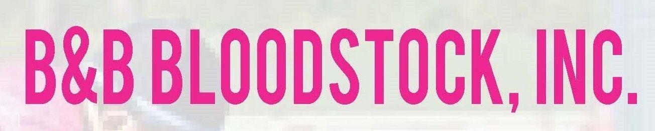 B&B Bloodstock