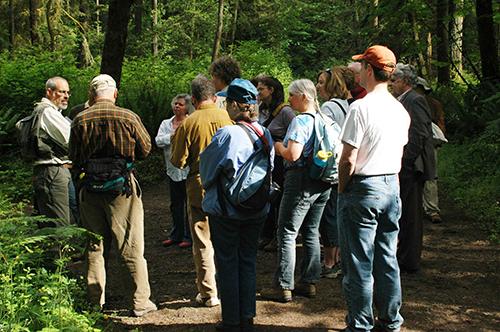 Botany Walk in Bridle Trails State Park