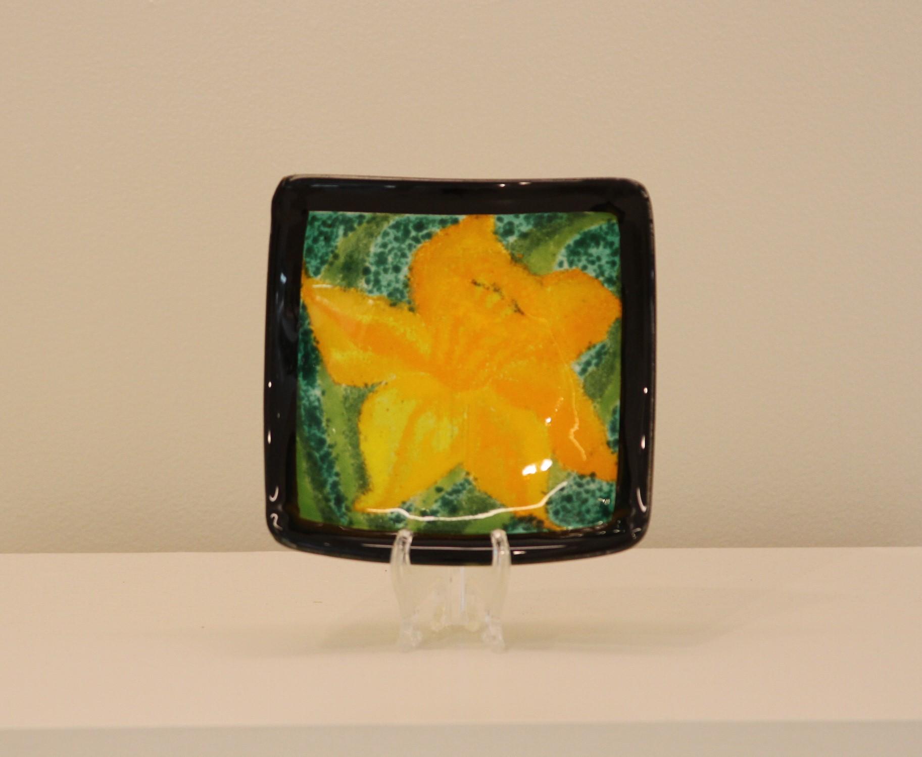 Daffodil - Black Border