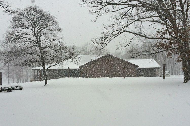 Winter Gallery 12