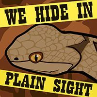 Register for November 3 class: We Hide in Plain Sight