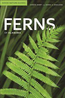 Ferns of Alabama