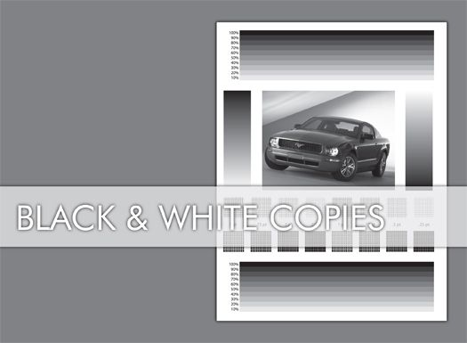 Black and White Copies