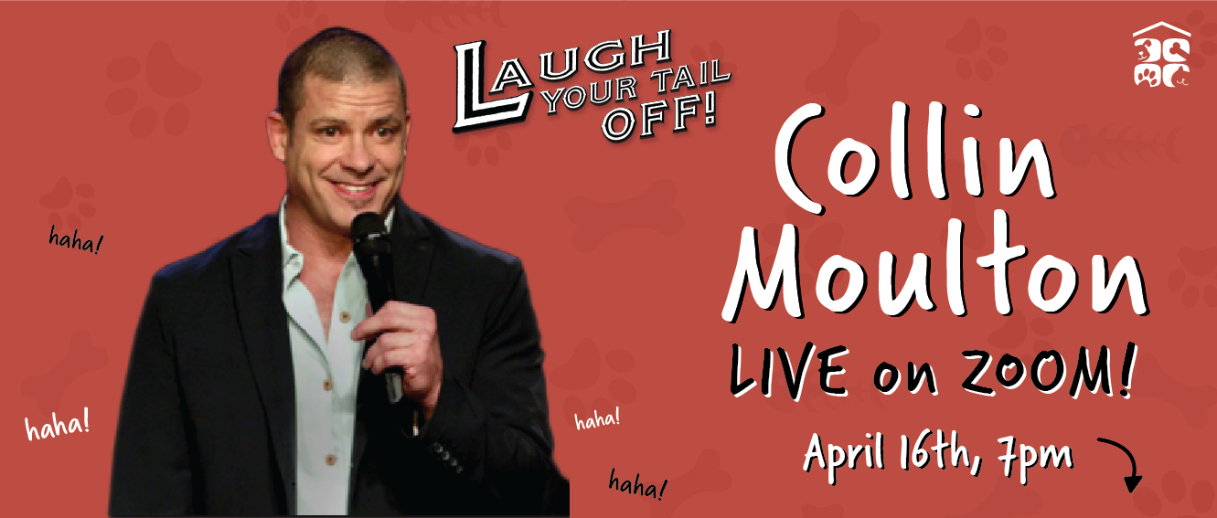 Laugh Your Tail Off: Collin Moulton Live on Zoom!
