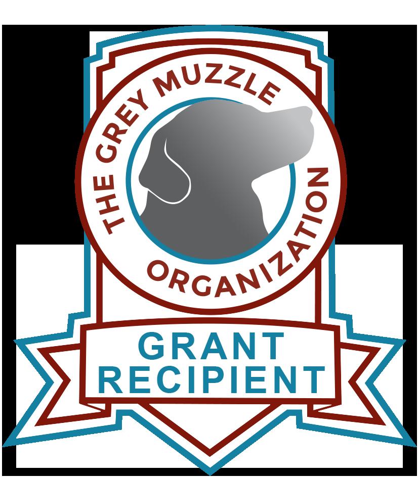 Grey Muzzle