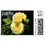 NeSoDak - Forever Stamps