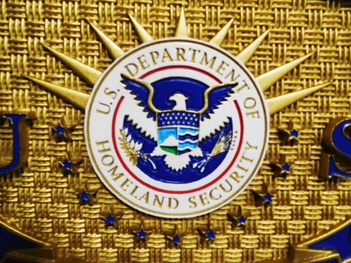 AP-4145 - Carved Plaque of the Badge of a Special Agent of Homeland Security,  Artist Painted