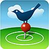 BirdsEye Birding