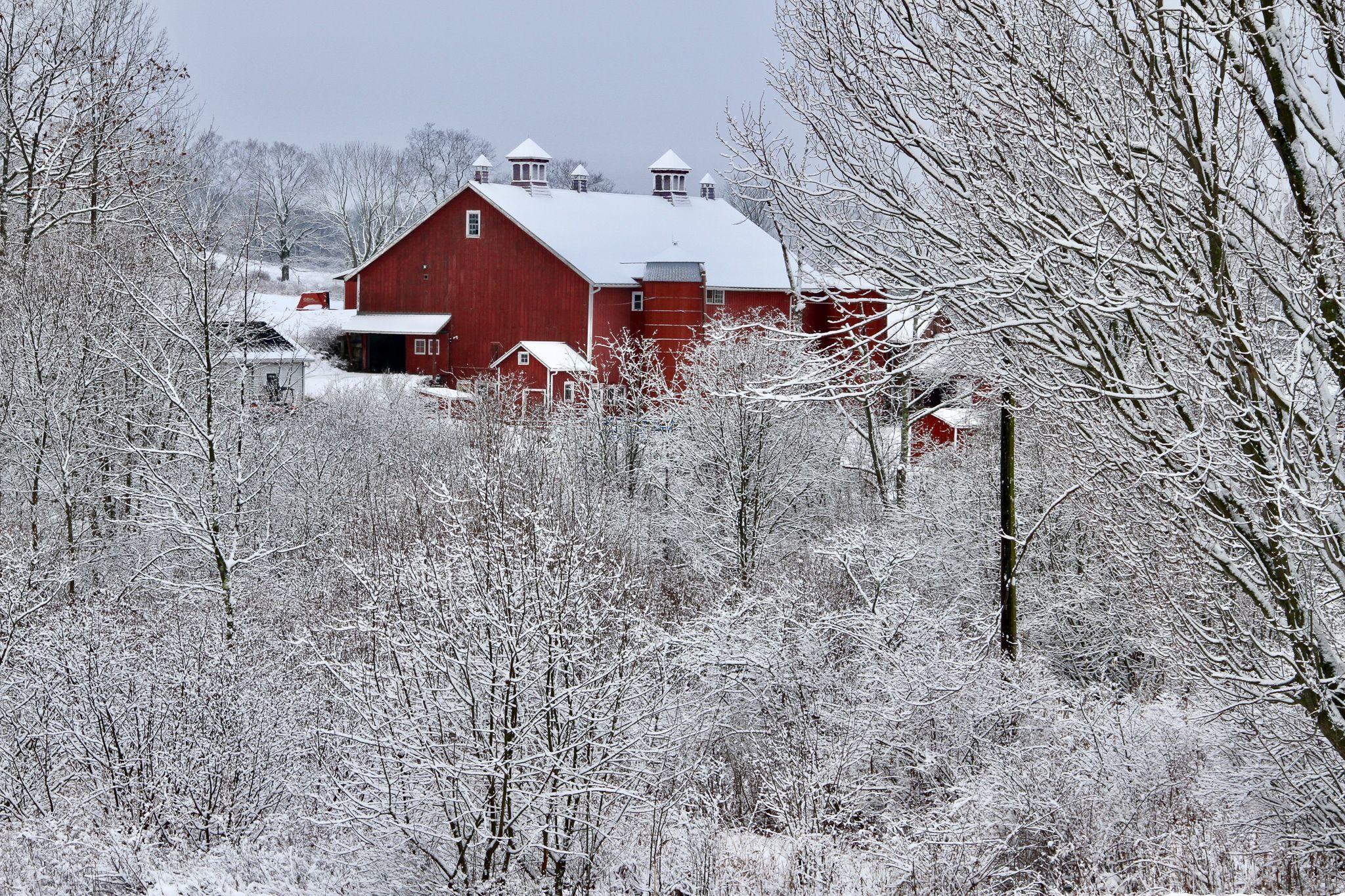 All in a Winter's Work: Incubator Farmers in the off-season