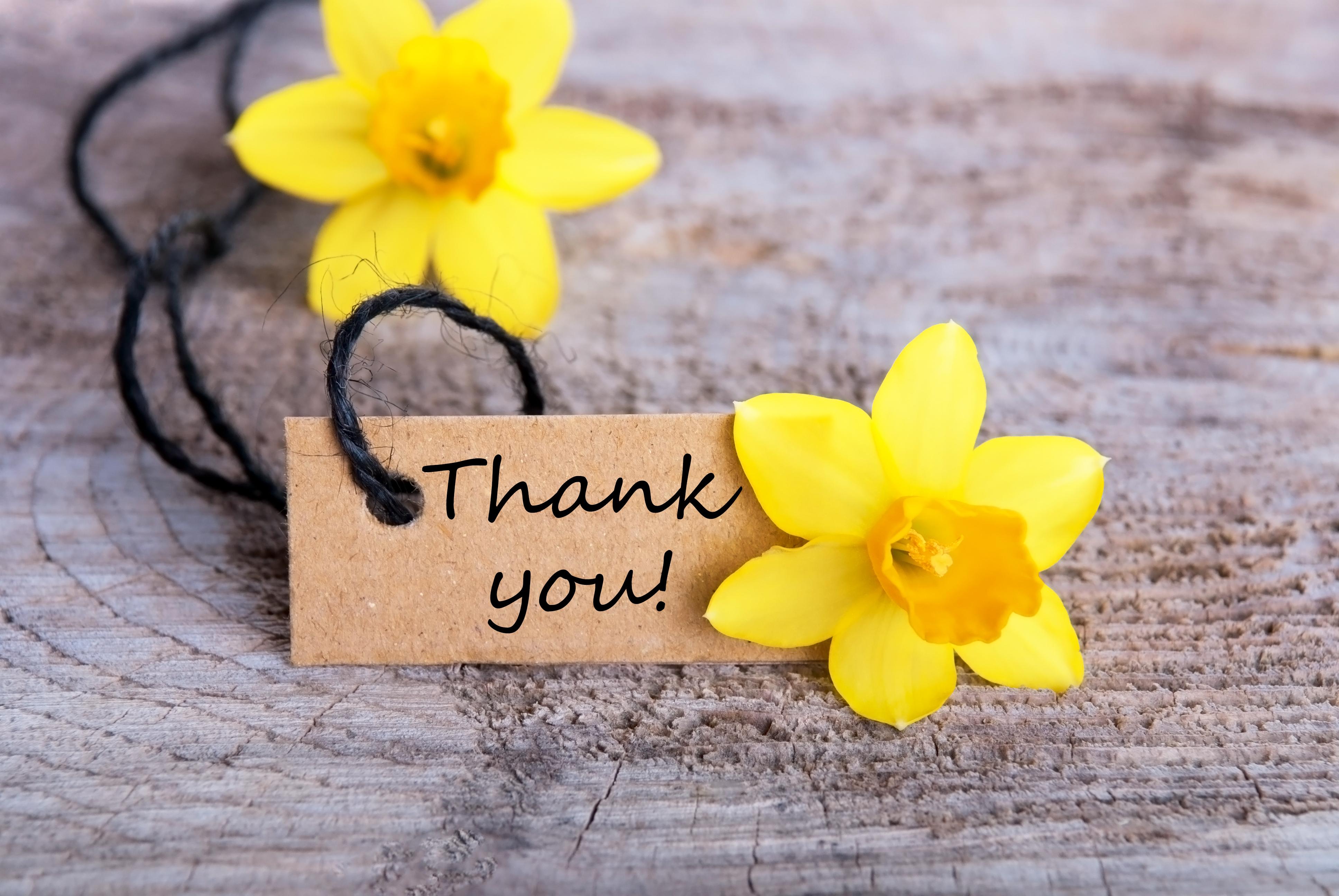 Donor and Volunteer Appreciation Week