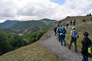 Guided Hummocks Hike