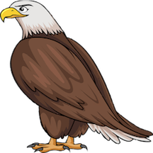 Eagle Supporter