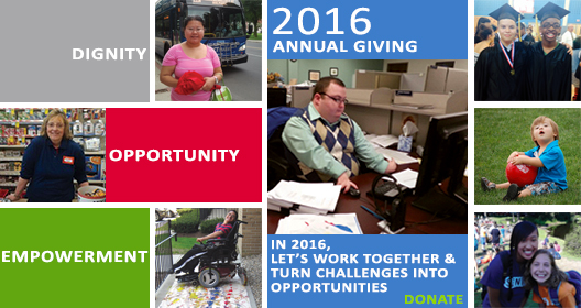 2016 Annual giving