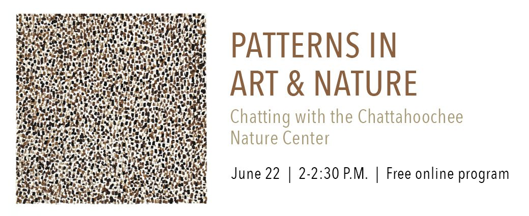 VIRTUAL: Patterns in Art and Nature