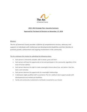 2019 Strategic Plan - Executive Priorities