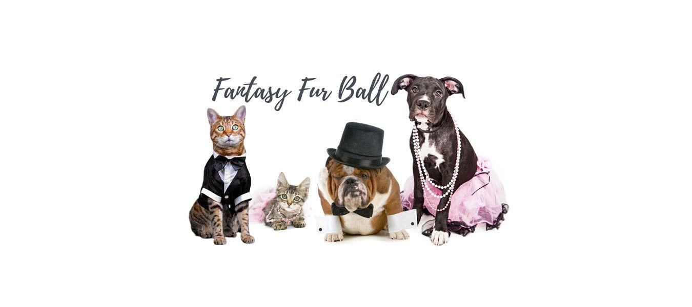 Fantasy Fur Ball