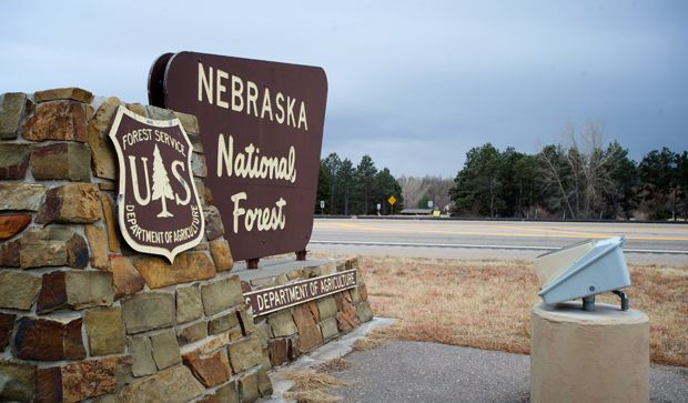 Nebraska National Forest