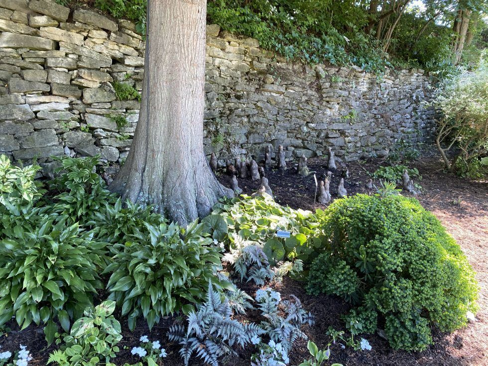 14. Chaplain Thomas B. Van Horne Memorial Wet Gardens
