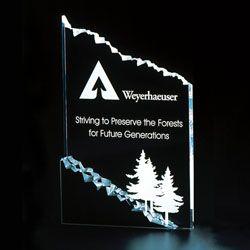 Chipped Acrylic Award