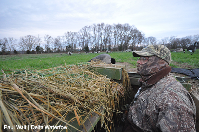 Delta Waterfowl Supports Sunday Hunting in Virginia