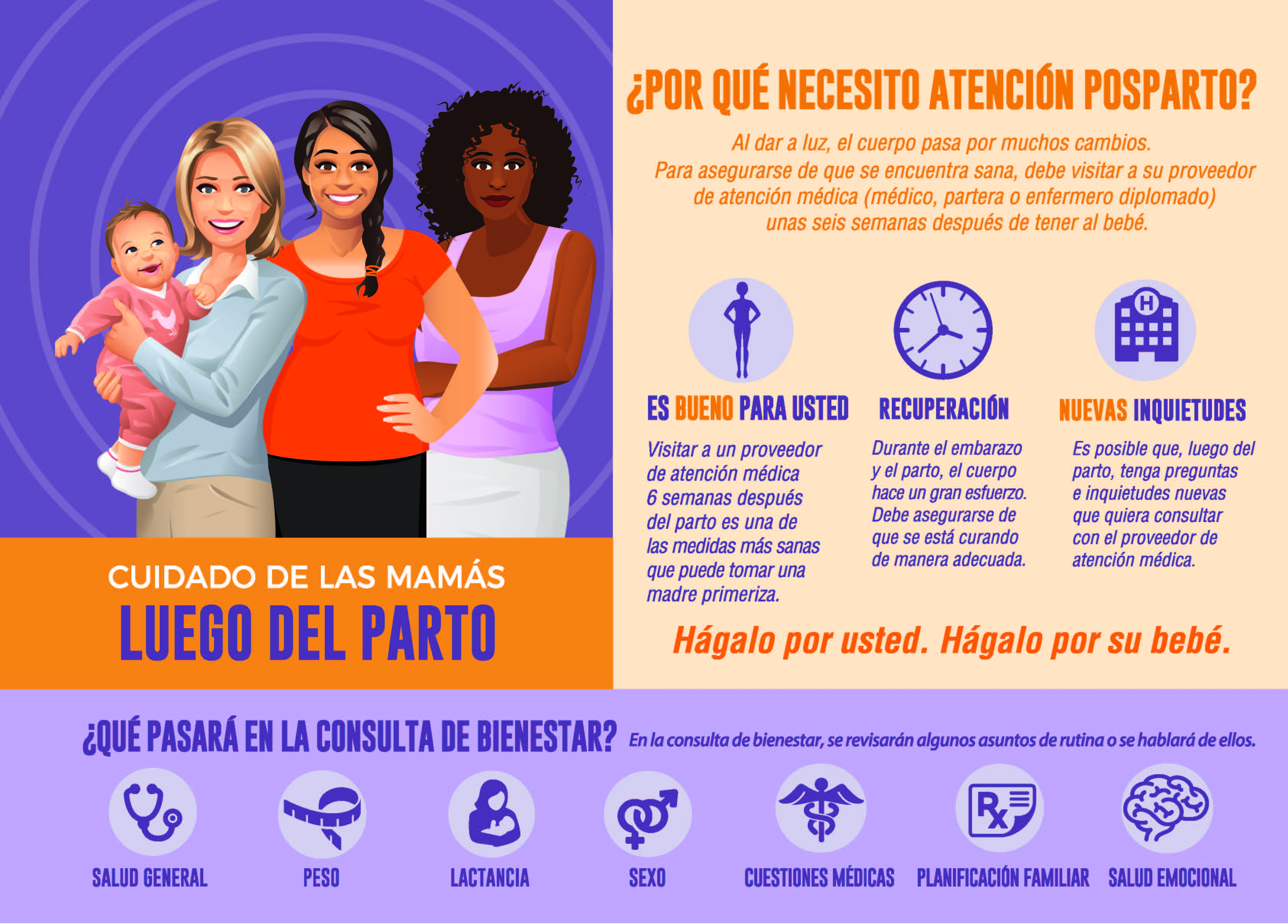 Postpartum Visit Infographic Poster (Spanish)
