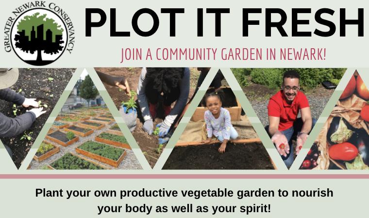 Join Plot It Fresh!