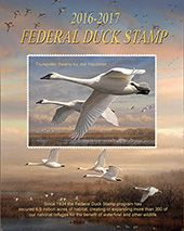 2016-2017 Federal Duck Stamp Poster, $20
